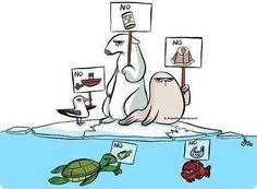 Protesta animal!