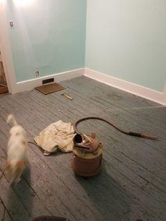 Stenciled a rug on a hardwood floor. Learned a lot.