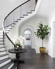 """Interiors Online on Instagram: """"Are you an Interiors Online home rewards member? Sign up to receive discounts, early access to sales, and exclusive invitations to members-…"""" Dyi, Diy Décoration, Curved Staircase, Staircase Design, Stair Design, Hall Design, Modern Staircase, Dark Wood Trim, Wood Interior Design"""
