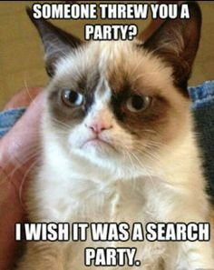 Grumpy cat, best grumy cat, hilarious grumpy cat, grumpy quotes ...For more sarcasm humor and lmao quotes visit www.bestfunnyjokes4u.com/rofl-funny-pic-of-the-day-8/