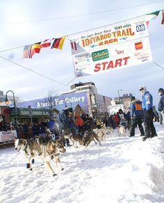 Iditarod Starting Line - Anchorage