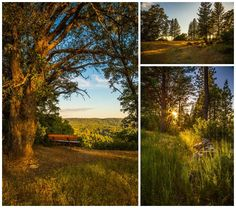 Go for a hike up to Sugarloaf Mountain and check out the views of downtown Nevada City, photos by Kial James/ Nevada City Scenics