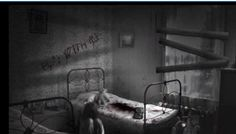 Real Horror, Dark Places, Abandoned Places, Serbian, House, Painting, Brother, Game, Videos