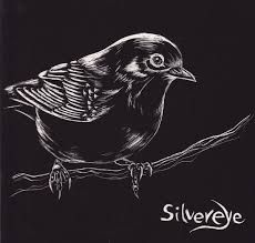 Image result for scratchboard drawings