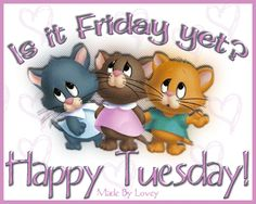 10 Fun Happy Tuesday Quotes, Sayings And Gifs day tuesday quotes happy tuesday tuesday images cute tuesday quotes tuesday greetings tuesday wishes tuesday picture quotes Happy Tuesday Pictures, Tuesday Images, Happy Tuesday Quotes, Happy Monday, Good Morning Tuesday, Tuesday Wednesday, Hello Tuesday, Sunday, Thursday