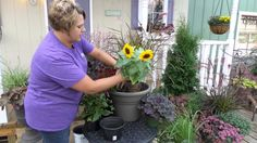 Easy How to Plant Fall Containers