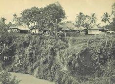 Kampung Paledang Bogor Dutch East Indies, Dutch Colonial, Bogor, Old Pictures, Time Travel, Netherlands, Country Roads, City, Outdoor