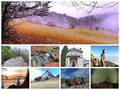 AFK - Blog de weekend: 26-27.11.2016 - Parcul National Cozia