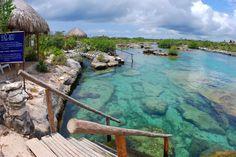 One of the best snorkeling spots   Tons of fish Akumal, Mexico | 5612 - Akumal Bay & Yal Ku Lagoon