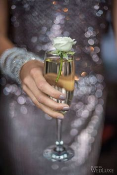 Romantic Valentine's day glass of champagne with a miniature rose Foxes Photography, New Year Celebration, Birthday Celebration, Nouvel An, New Years Eve Party, Yule, Beautiful World, Beautiful People, Beautiful Pictures