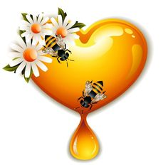 Bee honey dripping effect background vector 03