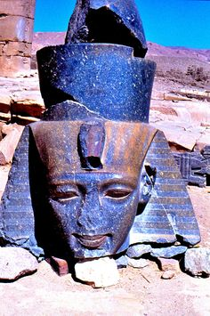 HEAD OF RAMSES II, THE RAMASSEUM | BRIAN PLAYFAIR | Flickr Amenhotep Iii, Kemet Egypt, Ancient Egypt History, Arte Tribal, Old Egypt, Egyptian Art, Ancient Artifacts, African History, Ancient Civilizations