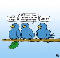 Oh My Freaking Stars!: Twitter Birds