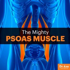 A Weak Psoas Muscle: Cause of that Back Pain? - Dr. Axe
