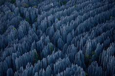 Madagascar Stone Forest    •    January 18, 2011   •   Photographs by Stephen Alvarez