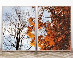Fall Wall Art PhotographyAutumn Tree Branches PrintSet of 2 | Etsy Infinite Art, Tree Wall Art, Autumn Trees, Modern Wall Art, Large Prints, Tree Branches, Printable Art, Wall Art Prints, Art Photography