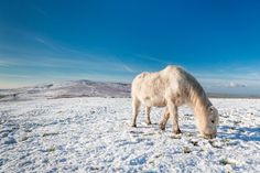 Ghostly Pictures Reveal Britain Plunged To Lowest Temperatures Of 2014 So Far
