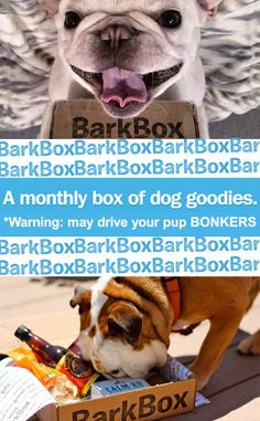 A box of high quality dog products for your pup, delivered to your door every month! A good gift fr someone who is really hard to shop for!