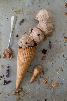 Lavender and Chocolate Ice Cream /