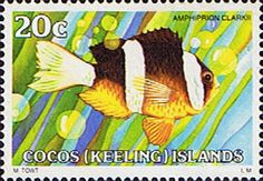 Cocos Keeling Islands 1979 Fishes SG 39 Clark's Anemonefish Fine Mint Scott Other Cocos Keeling Island Stamps HERE