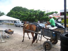 `,,´__ carroça _ borracharia em Aracaju ... !!!