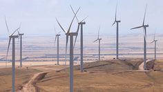 Wind farms have been increasing in number across the country as Australia seeks alternative sources of energy in preparation for the end of fossil fuels.