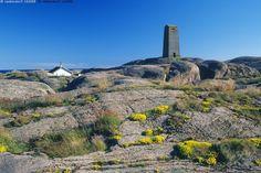 Majakka ja mökki - majakka mökki saari kallio rantakallio kasvi meri saaristo itämeri  kallioinen saaristomaisema kesä kesämaisema segelskär hanko