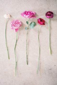 Ombre Rose Stems | Floral Class with The Nouveau Romantics | Camille Styles
