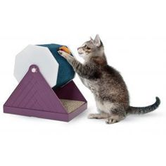Catit Corrugated Bed Scratcher and Swivel Toy http://toysforcats.net