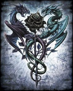 Dragons around a rose. #tattoo #tattoos #ink