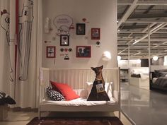 Ikea stores in Tempe, Arizona, and Singapore have teamed up with Home for Hope and the Arizona Humane Society to add life-sized cardboard cutouts of homeless animals to its showrooms.