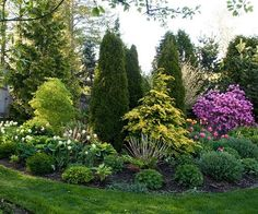 Keep Plants Vertical, Not Horizontal - Horizontal space is at a premium in many of the best small backyard ideas. That's why it's good to look for shrubs and trees that max out interest as they grow up, not out. Try dwarf varieties for a small backyard, a Evergreen Landscape, Garden Shrubs, Small Backyard, Evergreen Garden, Small Garden Landscape, Backyard Landscaping Designs, Small Yard Landscaping, Plants, Backyard