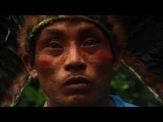 LUKASH: ÁRVORE (Lucas Weglinski e Ava Rocha) - YouTube Anahata Chakra, Tahiti, Spirit, Youtube, Rain, Rock, Fire, Movies, Rain Fall