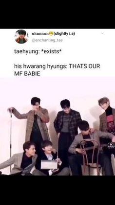 Bts Memes Hilarious, Bts Funny Videos, Bts Tweet, Bts Dancing, Bts Playlist, Bts Korea, Bts Chibi, I Love Bts, Album Bts