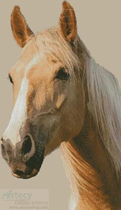Palomino Horse - Cross Stitch Chart - Click Image to Close