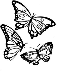 butterfly three gorgeous butterflies coloring pages three gorgeous butterflies coloring