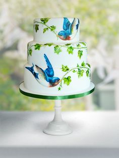 Gallery - Pictures of Hand Painted Cakes by MurrayMe - For all your edible paint supplies, please visit http://www.craftcompany.co.uk/ingredients/food-colouring/food-paints.html