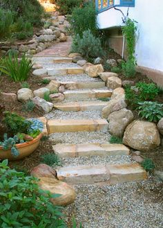 Side yard  Wendy Black Rogers Design Ideas, Pictures, Remodel, and Decor - page 18