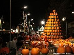 Google Image Result for http://www.mnn.com/sites/default/files/user-993/pumpkin%2520fest.jpg