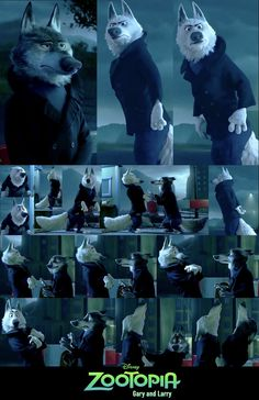 Gary and Larry Collage by 6SpiritKings.deviantart.com on @DeviantArt #gary #larry #timber #wolves #zootopia Another collage of screenshots for these two timber wolves. Since Gary was like the highlight of the wolf joke there isn't much screenshots of Larry unfortunately.