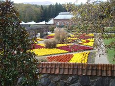 The Biltmore Estate Garden and Conservatory