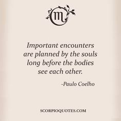 Important encounters are planned by the souls long before the bodies see each other -Paulo Coelho Scorpio Sagittarius Cusp, Scorpio Traits, Scorpio Love, Scorpio Quotes, All About Scorpio, Longing Quotes, Scorpio Season, Quotes And Notes, Spiritual Wisdom