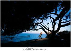 martin-johnson-house-la-jolla-san-diego-wedding-photographer-01 Birch Aquarium, Johnson House, Wedding Venues, Wedding Photos, Photography Ideas, Wedding Photography, Martin Johnson, San Diego Wedding Photographer, Family Events