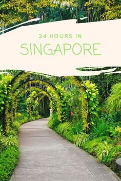 24 Hours in Singapore. Have a upcoming #transit or stop over through #Singapore - the fabulous city-state? Well look no further for your ultimate guide to get you through!