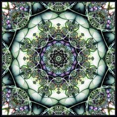 Mandala Green - mdichow by Ultra-Fractal on DeviantArt Fractal Design, Fractal Art, Mandala Pattern, Sacred Art, Beautiful Patterns, Sacred Geometry, Pretty Pictures, Illusions, Art Nouveau