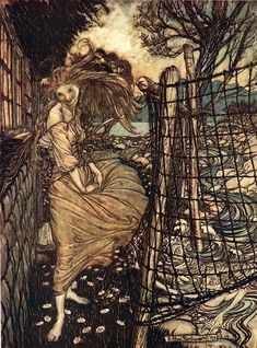 Undine Outside the Window ~A. Rackham (hint: look in the lower right beyond the fence)