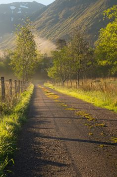 Country road on a misty morning (Scotland) by Martin Osvald