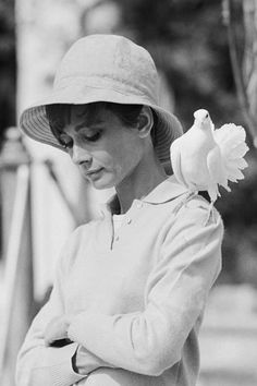 """""""The famous shot of Audrey Hepburn was just incredible. We were in a garden in the south of France and she was just a total pro – so great to work with. We were shooting and the dove just landed on her shoulder – she looked down and I got the shot and two frames later it flew away again. Incredible.""""-Terry O'Neill"""
