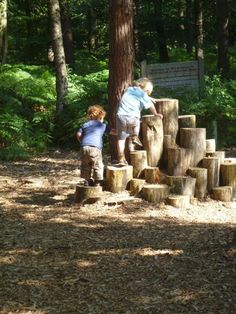 Use different height stumps/logs to create a climbing structure. Incorporate this into the bow of the boat somehow?