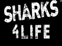 Go Sharks!!! Sharks, Bleach, Life, Shark